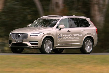 Volvo Cars begins first ever Australian tests for kangaroo safety research - B-roll